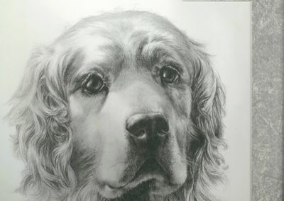 Dog portrait made in a class of the Community Education Program at Skagit Valley College, 2017