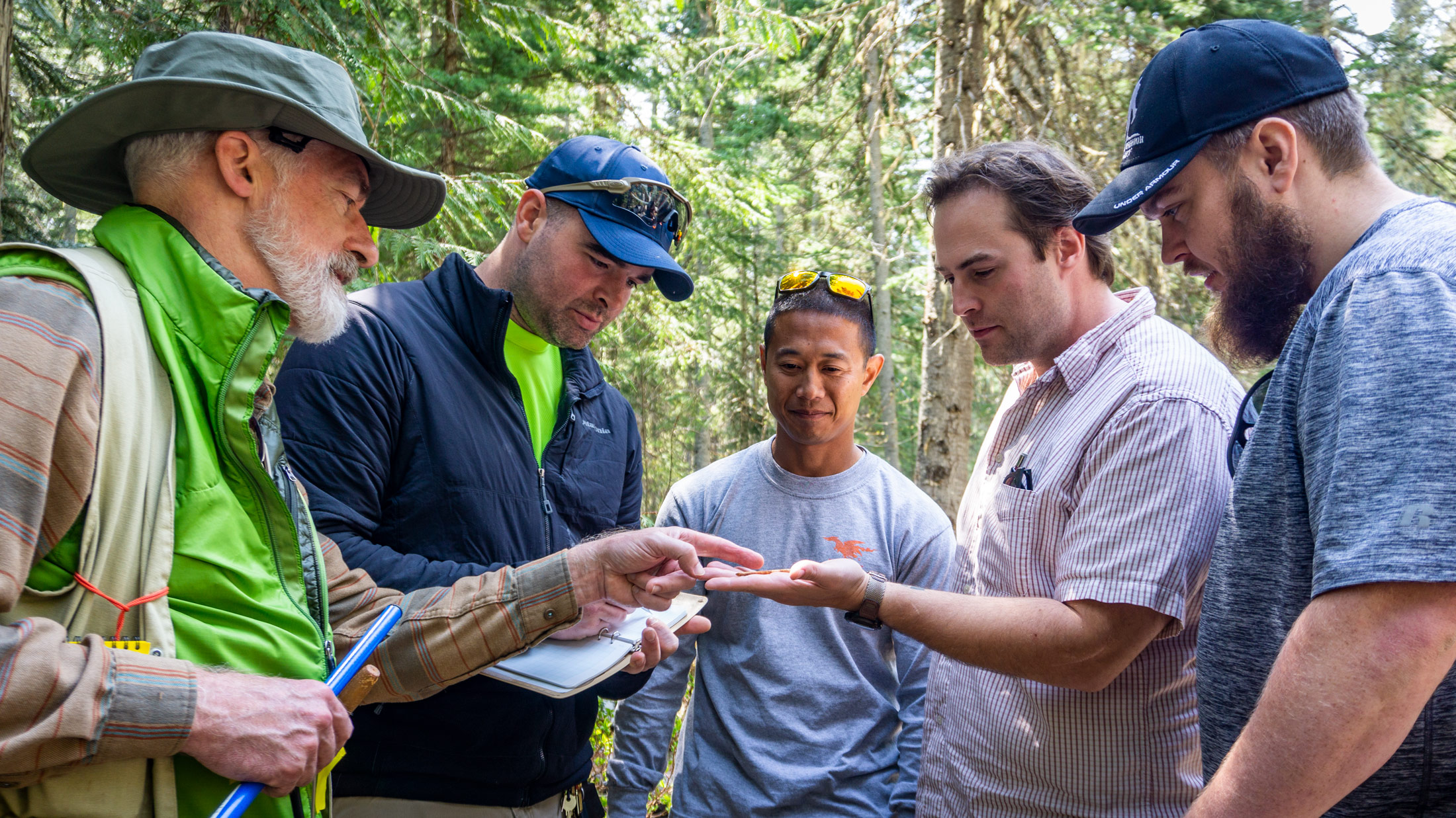 Forest Ecology students reviewing tree core sample.