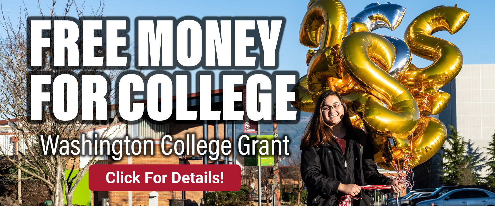 Washington College Grant homepage